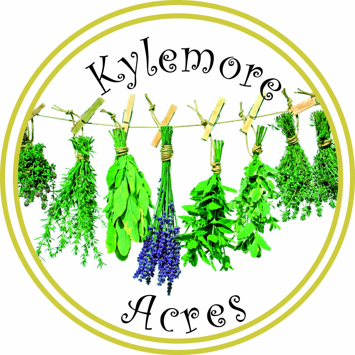 Kylemore Acres